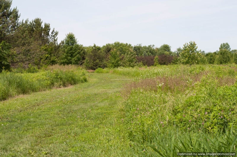 Bark Park, Batavia IL
