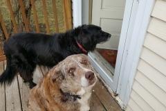 Odetta and Tessa